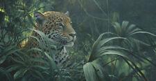 Symbol of the Rainforest Jaguar Robert Bateman Limited Edition Print Sold Out