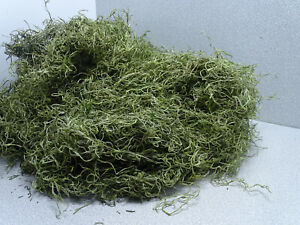 49,50€/Kg Dschungelmoos grün Deko Moos Floristik Basteln Packung 100g