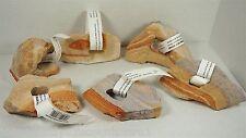 Mini Rainbow Deco Decorative Assorted Aquarium Fish Stones Rocks - Case of 6