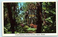 Orchid Cathedral Caribbean Gardens Naples Florida Vintage Postcard D39