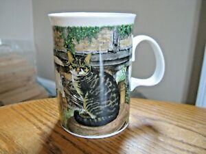 Dunoon England Mug Farmyard Cats by Richard Partis