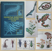 1990 Soviet Russian Book POISONOUS ANIMALS AND PLANTS OF THE USSR Biology