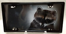 Raccoon  Airbrushed  Novelty License Plate-offset  WITH FREE BLACK FRAME