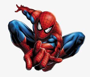 Iron on Transfer - (J1) Spider Man