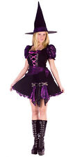 Witch Purple Punk Adult Small/Medium  Costume