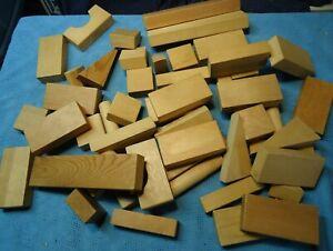 Playschool Wooden Building Blocks Lot Of 50 Pieces.