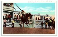 Mid-1900s Riding an Outlaw, American West Rodeo Scene Postcard