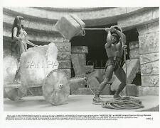 LOU FERRIGNO HERCULES 1983 VINTAGE PHOTO ORIGINAL #9 BODYBUILDER BEEFCAKE