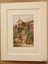 MAIDSTONE ANCIENT PALACE KENT ANTIQUE MOUNTED PRINT OLD