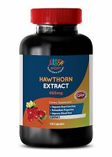 Boosts Overall Health - Hawthorn Leaf Extract 665mg - Organic Garlic Extract 1B