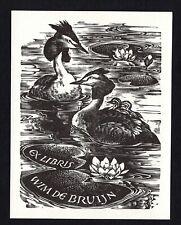 EXLIBRIS,224b -  Leslie Benenson - Haubentaucher