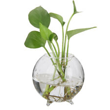 6pcs Glass Ball Shaped Flower Plant Tabletop Vases Fish Bowl Container Decor