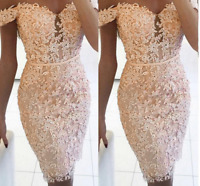 Women Off Shoulder Lace Backless Casual Wedding Bodycon Sexy Prom Cocktail Dress