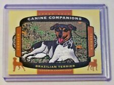 2018 Goodwin Champions Canine Companions Manufactured Patch Brazilian Terrier