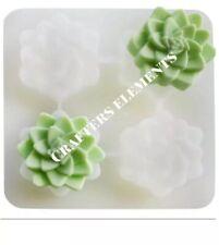 USA Silicone Cactus Succulent Soap Mold Boho Hand soap Shampoo Bars 4 Cavity