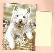 West Highland Terrier Notecards Note Card Hitching A Ride Paul Doyle Pack of 5 f
