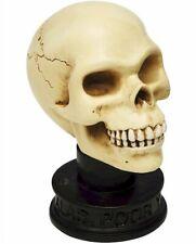 "Alas Poor Yorick Skull 2.5"" Shakespeare Hamlet"
