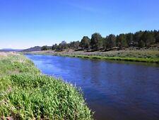 5.03 AC~OREGON LAND~GORGEOUS~RIVERFRONT~NEAR CALIFORNIA & CRATER LAKE~CASH SALE
