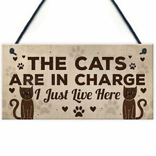 Hanging Quote 20cm Plaque Have you Kissed Your Dog Today