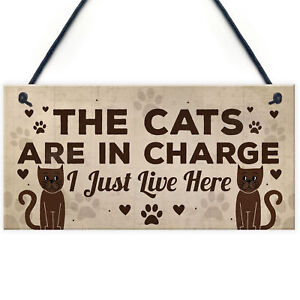 Funny Cat Gifts For Cat Lovers Gift For Women Home Decor Animal Sign Pet Gifts