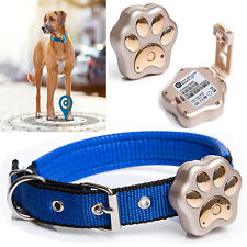 Pet Collar Anti-lost GPS Tracker Wifi Safety Zone Leds Light RF-V30 Puppy Cat