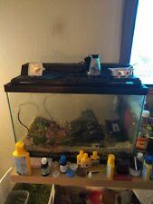 20 gallon tall fishtank