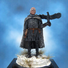 Painted Darksword Miniature Nights Watch Raven Keeper of the Shadow Tower