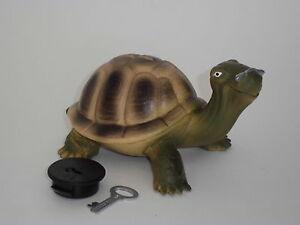 Spardose Schildkröte - Turtle - Kröti