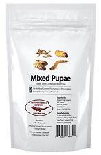 Mixed Pupae (Bag of Mixed Edible Insects)