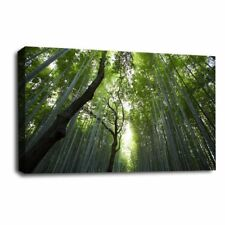 FOREST LANDSCAPE WALL ART Canvas Green Brown Trees Picture Print SET 1