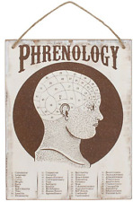 Cabinet of Curiosities Phrenology Wall Sign Novelty Gift Fate