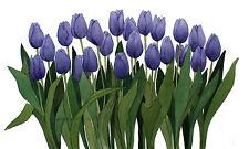 Purple Row Tulips Original Watercolor