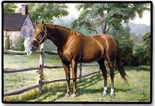 """DOORMAT--18"""" X 27""""--LADY-Cat with Horse by Fiddler""""s Elbow"""