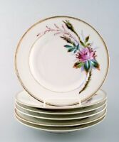 6 antique Royal Copenhagen plates hand decorated with flowers. App. 1850s