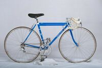 VINTAGE HANDMADE HOLLAND BICYCLE with CAMPAGNOLO C RECORD DELTA GROUP