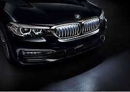 Grille Set Iconic Glow Genuine BMW G30 5 Series 63172466430