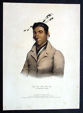 1841 McKenny & Hall Original Folio Antique Print Chippeway Chief American Indian