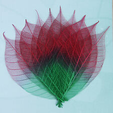 Pack of 10 2 Tone Skeleton Leaves - red/Green Approx 9cm Long