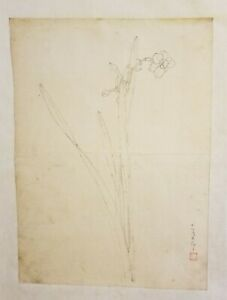 Original 18th Century Chinese Ink Drawing