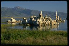 380075 Calcium Carbonate Tufa Mono Lake CA A4 Photo Print