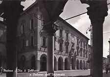 PADOVA - Via 8 Febbraio e Palazzo dell'Università 1955