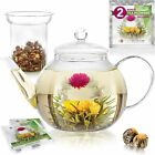 Teabloom Stovetop & Microwave Safe Glass Teapot (40 OZ / 1.2 L) with Removable L