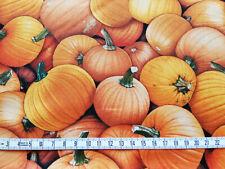 Kürbis 10 X 112 cm Gemüse Baumwollstoff Nahrung Food Vitamine Suppe Butternut