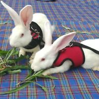 Hamster Rabbit Harness Walk Lead Leash Set Ferret Guinea Pig  Animal S/M/L FAC