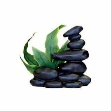 "LM Blue Ribbon Zen Spa Stones with Plant - Black 5.5""L x 3.5""W x 5.25""H"