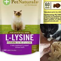 CAT CHEWS L-LYSINE Pet Treats Immune Respiratory Support Supplement 60 Bites