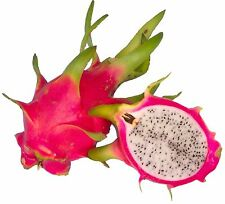 1 Dragon Fruit cutting / Red Skin with white Flesh~Sweet! & Juicy!