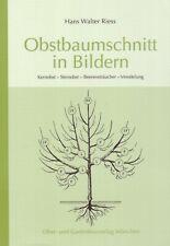 Obstbaumschnitt in Bildern Baumschnitt Anleitung Obstbäume Veredelung Neu