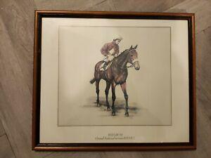 Grand National. Red Rum. 1973/74/77 Winner. Framed Print. Horse Racing