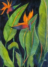 Bird of Paradise Archival Art Print Green Original Watercolor Botanical Floral